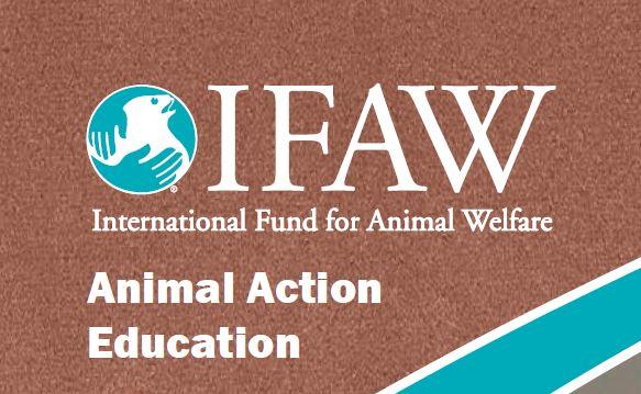 Keep Wild Animals Wild - 3-5